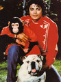 MJ with animals - michael-jackson photo