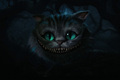 The Cheshire Cat - the-cheshire-cat photo