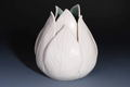 Tulip vase handmade ceramics - home-decorating photo