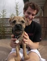 murray and dog - andy-murray photo