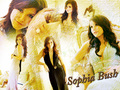 one-tree-hill - ♥Sophia Bush♥ wallpaper