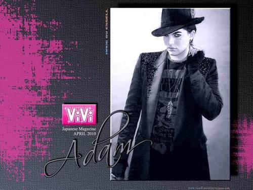 Adam Vivi wallpaper