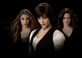 Alice!!! - twilight-series photo