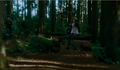 Carlisle Chasing Victoria in Eclipse? - twilight-series photo