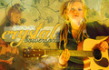 Crystal Bowersox Header - american-idol fan art
