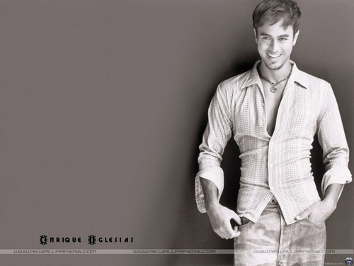 Enrique Iglesias images Enrique Iglesias HD wallpaper and background photos