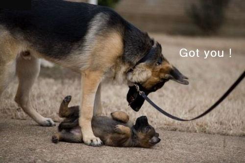 Got you !