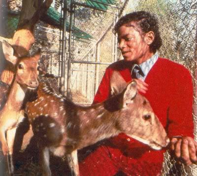 MJ - the rare album