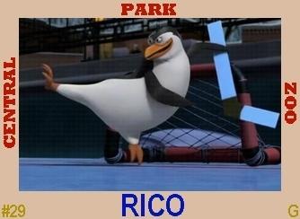 Rico's Hockey Card