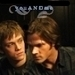 Sam and Adam - adam-milligan icon