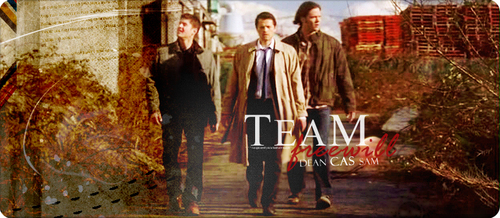 Team Free Will Header
