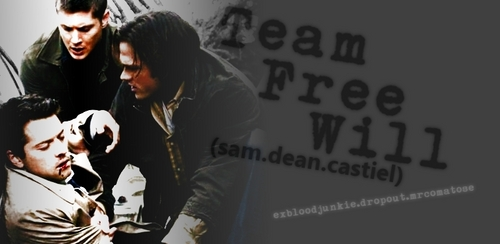 Team Free Will banner by samanthamt