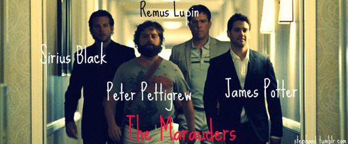 The New Marauders