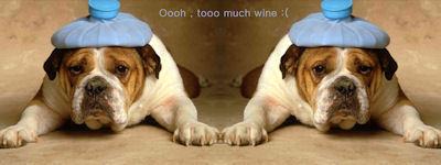 Tooo much wine !!