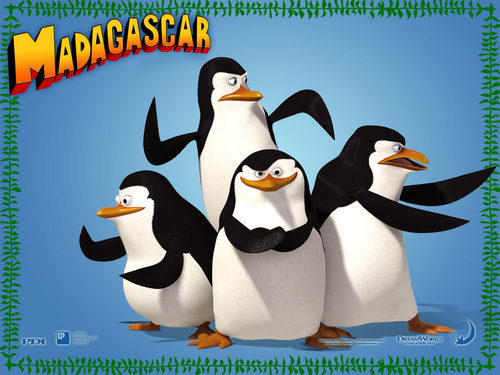penguins of madagascar - penguins-of-madagascar Wallpaper