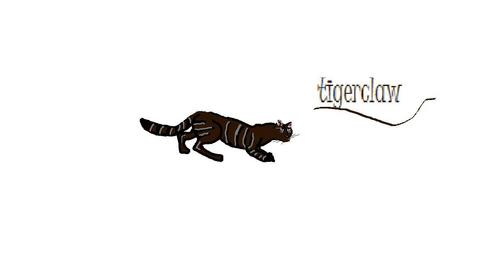 Warriors Novel Series Wallpaper Titled Tigerclaw