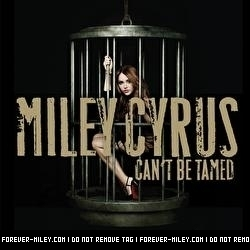 """""""Can't be Tamed"""" Cover Album"""