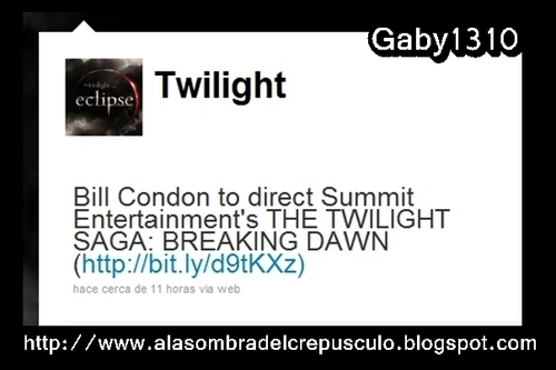 Breaking Dawn tiene director
