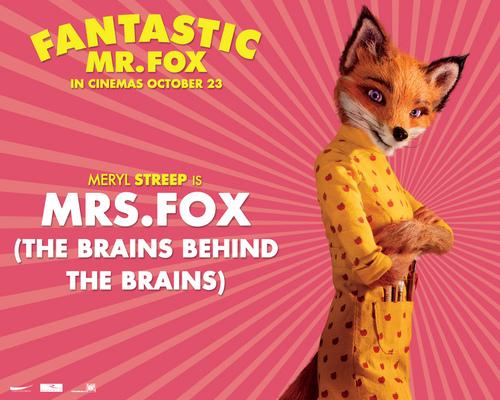 Fantastic Mr. लोमड़ी, फॉक्स - Wallpaer - Mrs. लोमड़ी, फॉक्स