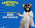 Fantastic Mr. Fox - Wallpaper - Ash - fantastic-mr-fox wallpaper