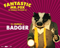 Fantastic Mr. Fox - Wallpaper - Badger - fantastic-mr-fox wallpaper