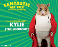Fantastic Mr. Fox - Wallpaper - Kylie - fantastic-mr-fox wallpaper