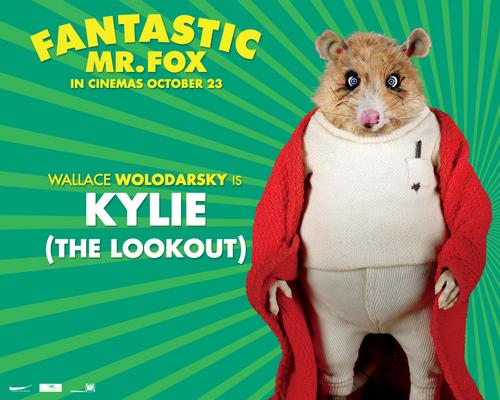 Fantastic Mr. लोमड़ी, फॉक्स - वॉलपेपर - Kylie