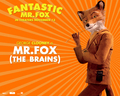 Fantastic Mr. Fox - Wallpaper - Mr. Fox - fantastic-mr-fox wallpaper