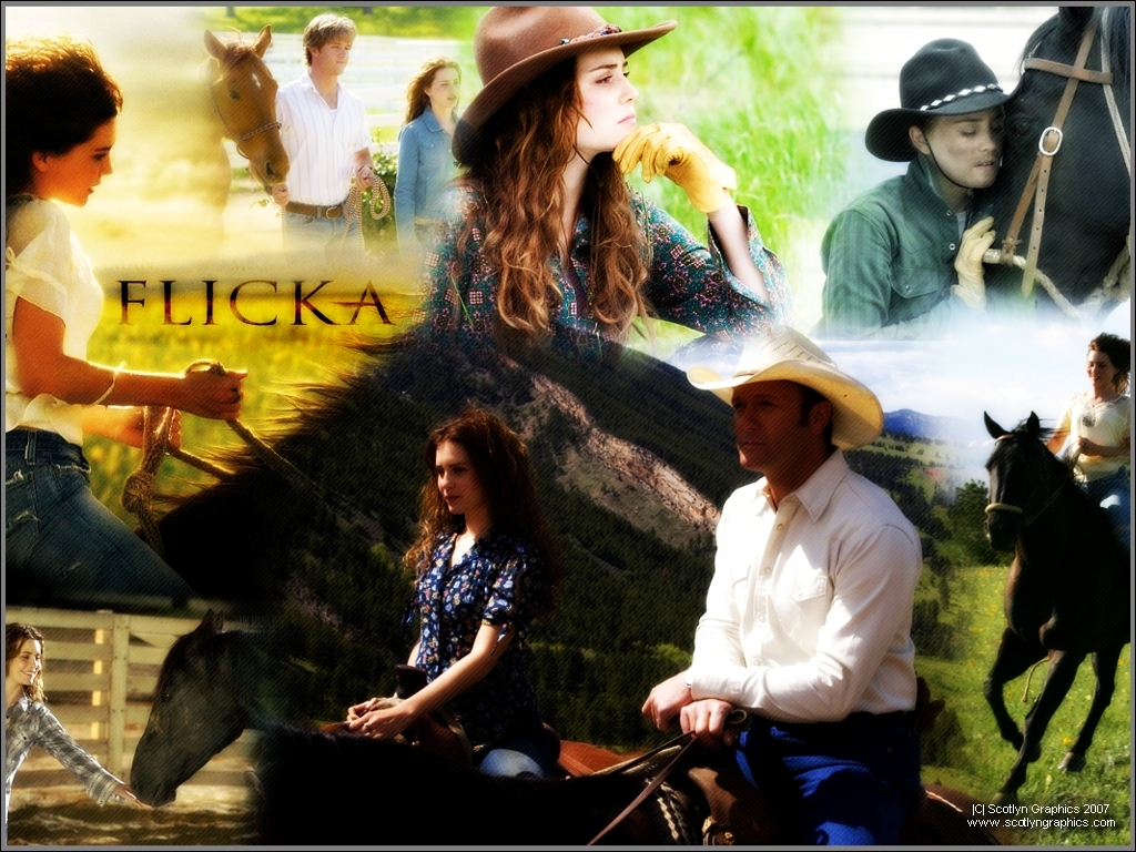 the movie flicka Flicka is a 2006 movie adapted from the popular children's novel my friend flicka by mary o'hara katy mclaughlin (alison lohman) has dreams of taking over her father's wyoming horse ranch.