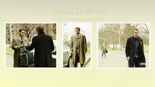 House M.D. wolpeyper