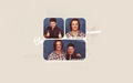 Jared - jared-padalecki wallpaper