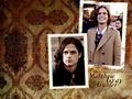 MGG - matthew-gray-gubler wallpaper