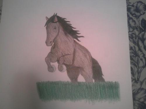 My Drawing Of Filcka