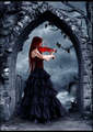 Random Violins