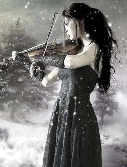 Violin Images Random Violins Wallpaper And Background Photos