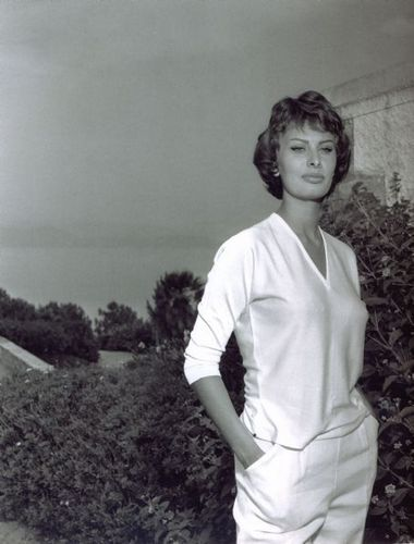 Sophia Loren wallpaper entitled Sophia Loren
