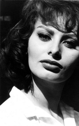 Sophia Loren wallpaper entitled Sophia Loren