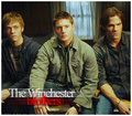 The Winchester brothers - winchester-girls fan art