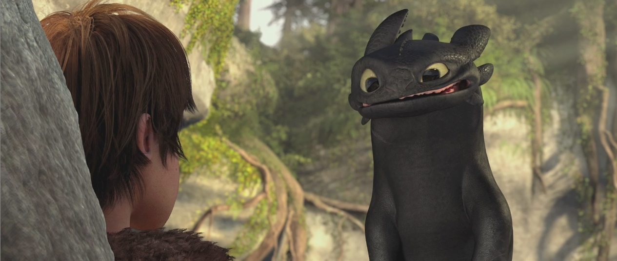 http://images2.fanpop.com/image/photos/11800000/Toothless-how-to-train-your-dragon-11838754-1265-535.jpg