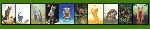 Warrior Cats (2)