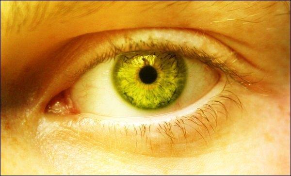 yellow eyes - photo #7