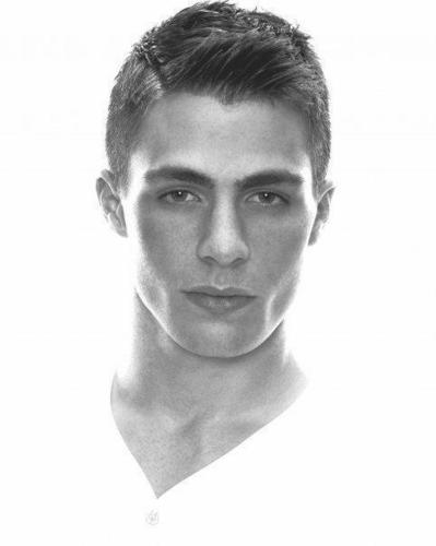 Colton Haynes wallpaper called colton haynes