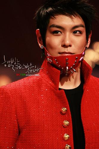Choi Seung Hyun wallpaper entitled cutie top.
