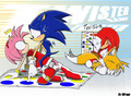 play a little game on amy and sonic