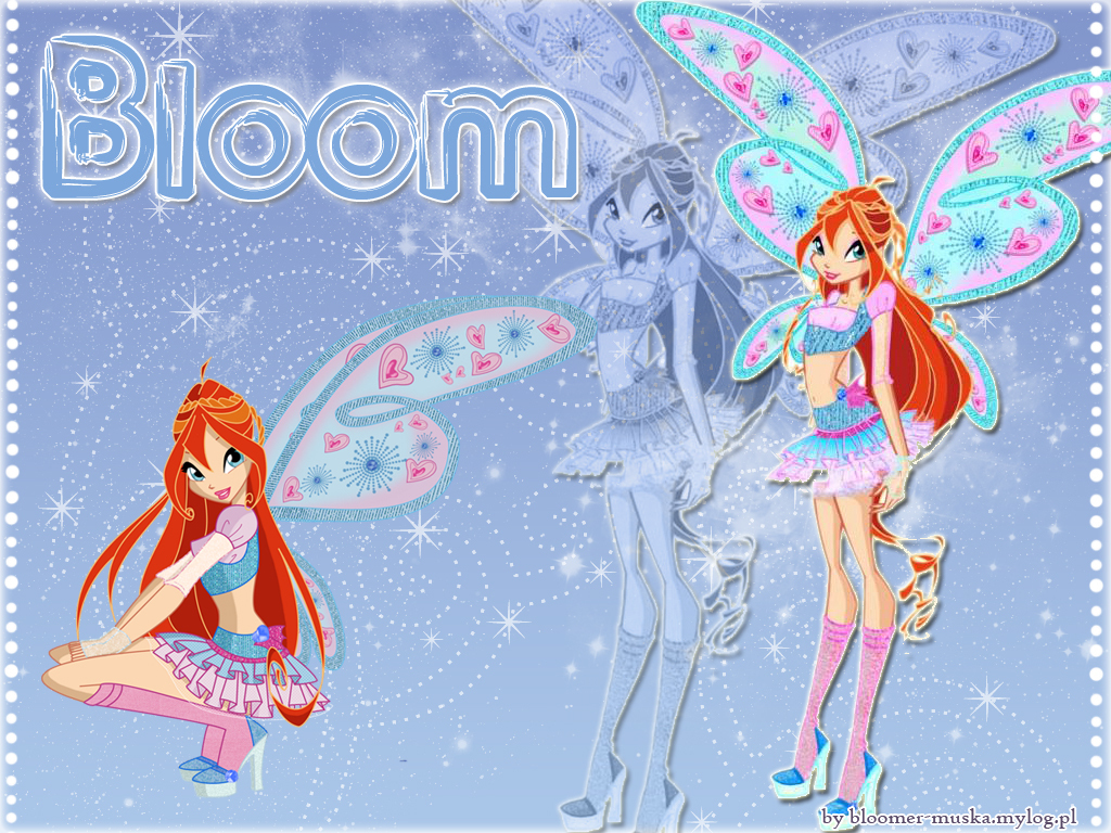 the winx club!!!!! - the-winx-club wallpaper