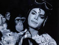 Bubbles & MJ <3 - michael-jackson photo