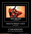 Don't mess with Canadians - canada photo