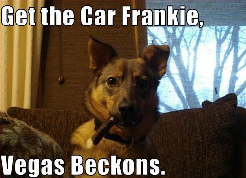 Get the Car Frankie !