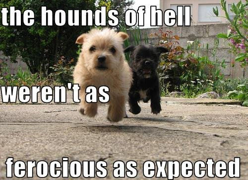 Hounds of Hell.........lol !