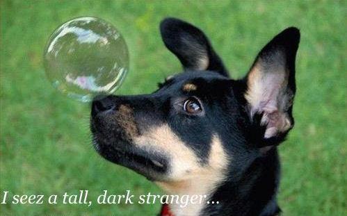 I seez a tall, dark stranger…